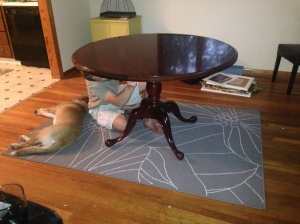 Gus helps set-up the table.